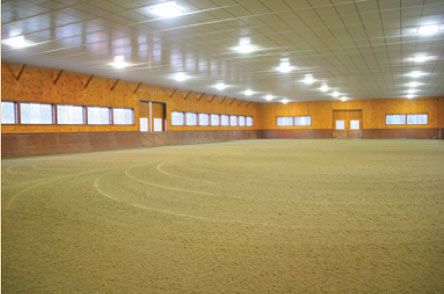 Kc Equestrian Center Home